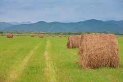 Cute haystacks in the field Stock Photos
