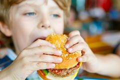 Cute healthy preschool boy eats hamburger sitting in school canteen royalty free stock images