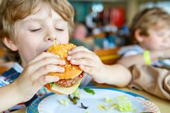 Cute healthy preschool kid boy eats hamburger sitting in school or nursery cafe. Happy child eating healthy organic and royalty free stock image