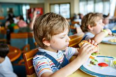 Cute healthy preschool kid boy eats hamburger sitting in school or nursery cafe. Happy child eating healthy organic and royalty free stock photography