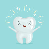 Cute healthy shiny cartoon tooth character, childrens dentistry concept vector Illustration Stock Image