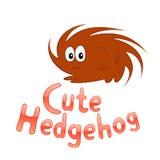 Cute hedgehog Stock Images