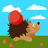Cute hedgehog with apple. Funny bright cartoon illustration Royalty Free Stock Photos