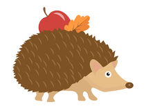 Cute hedgehog with apple and leaf on thorns, icon flat or cartoon style. Isolated on white background. Vector. Illustration Stock Photography