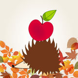 Cute hedgehog with apple Royalty Free Stock Photography