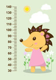 Cute hedgehog on the background of flowers meter wall from 30 to 140 centimeter. Vector Royalty Free Stock Photography