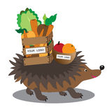 Cute hedgehog with basket of fruits and vegetables on his back on white background. Cute hedgehog carries on his back a basket full of fruits and vegetables Stock Photography