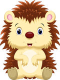 Cute hedgehog cartoon Royalty Free Stock Image