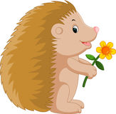 Cute hedgehog cartoon. Illustration of Cute hedgehog cartoon Stock Photography