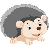 Cute hedgehog cartoon. Illustration of Cute hedgehog cartoon Royalty Free Stock Images