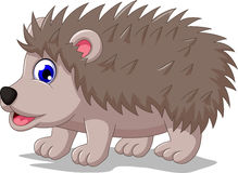 Cute hedgehog cartoon posing. Illustration of cute hedgehog cartoon posing Stock Photo