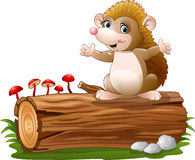 Cute hedgehog cartoon on the tree log. Illustration of Cute hedgehog cartoon on the tree log Royalty Free Stock Photos