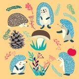 Cute Hedgehog forest animals set. Vector hedgehog cute. Cute Hedgehog forest animals set illustration stock illustration