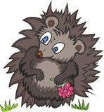 Cute hedgehog Stock Image
