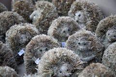 Cute hedgehog souvenirs Stock Photo
