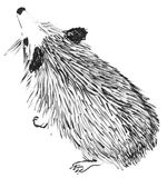 Cute hedgehog spontaneous sketch Stock Image