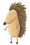Cute hedgehog standing Royalty Free Stock Images