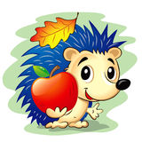 Cute Hedgehog. Vector illustration of cute cartoon hedgehog holding a red apple Stock Illustration