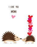 Cute hedgehogs. Stock Photography