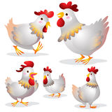Cute hen cartoon. Illustration ofCute hens on a white background Royalty Free Stock Images