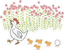 Сute hen with chicks near the flowers Stock Images