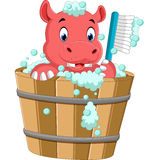 Cute hippo bathing time Stock Images