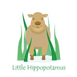 Cute Hippo Calf. Isolated on White with the Caption. Made in Flat Style. Vector EPS 10 Royalty Free Stock Image