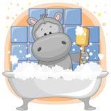 Cute Hippo Royalty Free Stock Photos