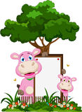 Cute hippo cartoon with blank sign in garden Royalty Free Stock Images