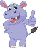 Cute hippo cartoon give thumb up Royalty Free Stock Photos