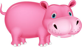 Cute hippo cartoon Stock Photos