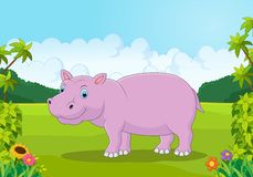 Cute hippo cartoon in the jungle Stock Image