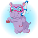 Cute hippo diving. Illustration of Cute hippo diving Stock Images