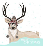 Cute hipster deer with hat and glasses winter background Royalty Free Stock Photos