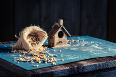 Cute home for birds and construction plan Royalty Free Stock Photography