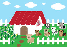 Cute home cute dogs with flowers Royalty Free Stock Image