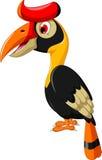 Cute horn bill cartoon posing. Illustration of cute horn bill cartoon posing Royalty Free Stock Photography