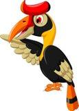 Cute horn bill cartoon waving. Illustration of cute horn bill cartoon waving Royalty Free Stock Images