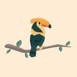 Cute hornbill . Royalty Free Stock Photography