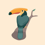 Cute hornbill . Royalty Free Stock Photo