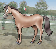 Cute horse. A cute smiling young horse standing in a training field royalty free illustration