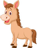 Cute horse cartoon Royalty Free Stock Image