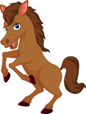 Cute horse cartoon Royalty Free Stock Image