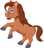 Cute horse cartoon running Royalty Free Stock Photo