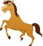 Cute horse cartoon Stock Image