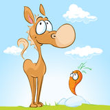Cute horse with friend - carrot standing Stock Images