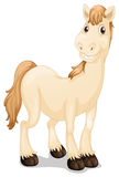 A cute horse. Illustration of a cute horse on a white background Royalty Free Stock Photos
