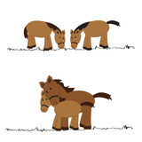 Cute horses Stock Photography