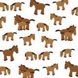 Cute horses Stock Photo