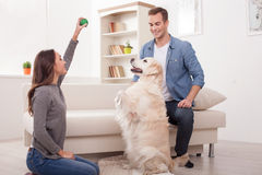 Cute husband and wife with their pretty pet Royalty Free Stock Images